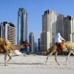 Получится ли отдых летом в ОАЭ